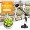 厂家直销台式植物生长补光灯育苗防太阳光蔬菜多肉红蓝光花卉增鲜