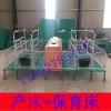 畜牧养殖设备母猪产床  产保一体产床